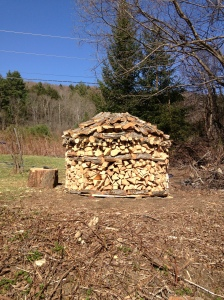 tree felled, chopped, and stacked by Tall Dark & Handsome
