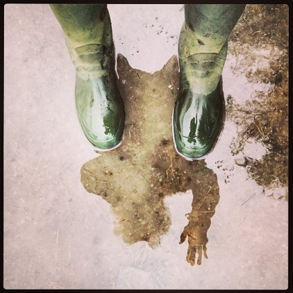 hello mud season 2014