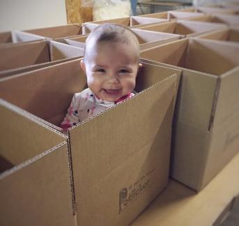 Emma in pk box